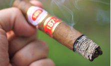 Nguyên nhân và cách khắc phục Xì gà bị rách, nứt lá ngoài