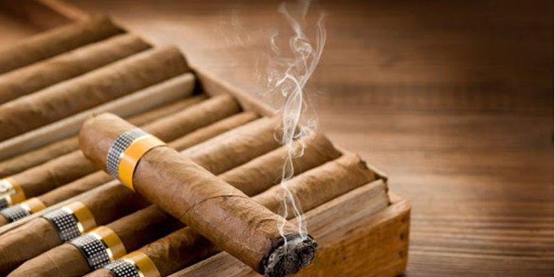 Thuốc lá xì gà có gì khác so với thuốc lá thường?