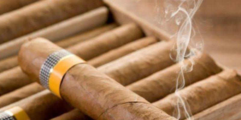 Tiêu chí lựa chọn loại xì gà cho người mới hút