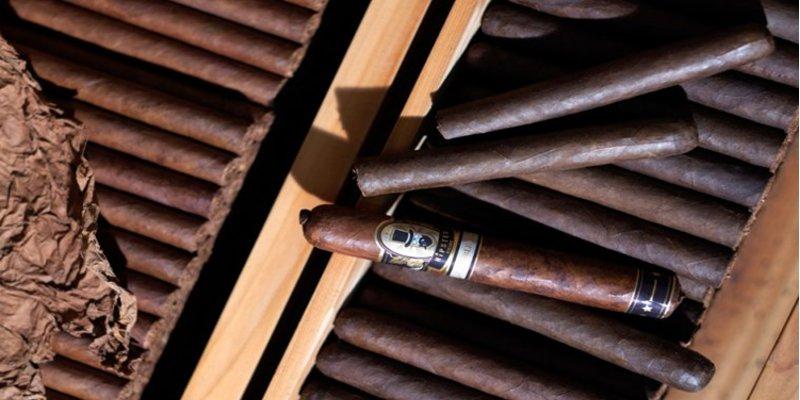 Những dòng xì gà nhẹ cho người mới hút