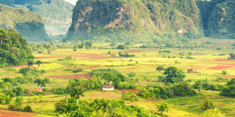 Thung lũng Vinales – nơi trồng thuốc xì gà lớn nhất tại Cuba
